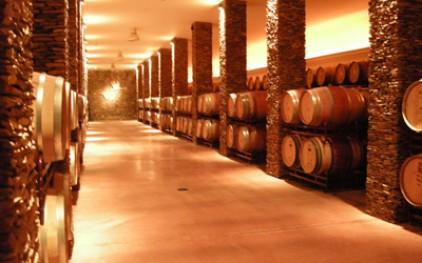 Экспорт вин из Алентежу в Бразилию увеличился на 48%