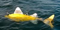 Рыба-робот будет следить за состоянием прибрежных вод в Испании