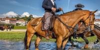 Ярмарка лошадей в Португалии