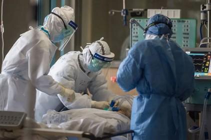 Португалия: пять смертей и 294 новых случаев COVID-19