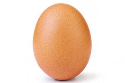 Простое куриное яйцо поставило мировой рекорд в Instagram