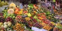 Португалия: фермеры потеряют 21 млн евро в случае забастовки водителей