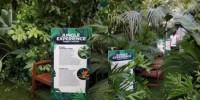 Италия: джунгли на центральном вокзале Неаполя