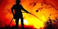 Португалия: боле четырех тысяч пожаров за месяц