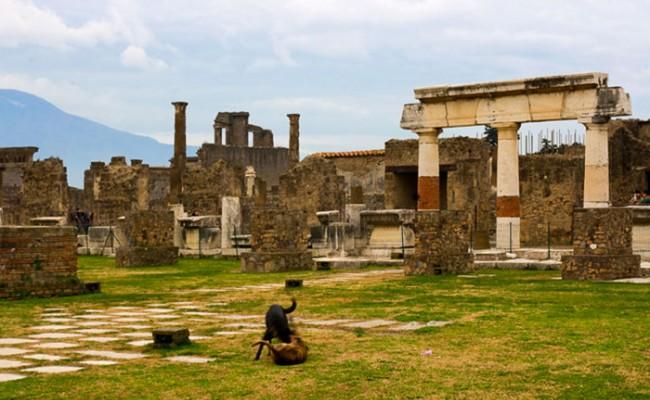 Италия: канадка вернула украденные артефакты