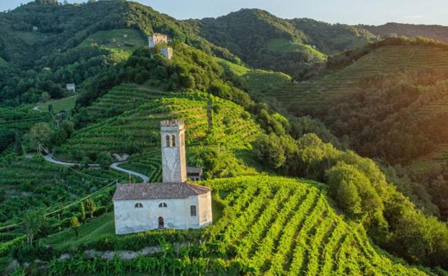 Италия: холмы Просекко включили в Список всемирного наследия ЮНЕСКО