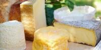 Итальянцы запустят производство сыров в Калмыкии