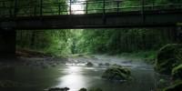 Запрещенные пестициды найдены в водах Португалии
