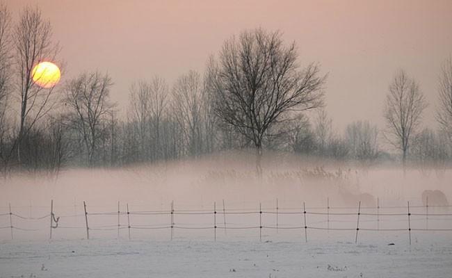 В Британии начали продавать итальянский туман