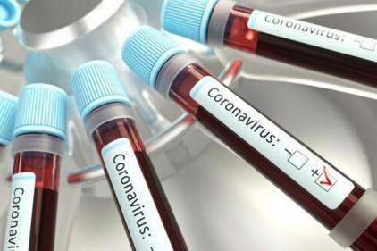 В Португалии число заразившихся коронавирусом достигло 13956 человек
