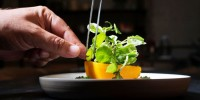 Испания: лучшие овощи подают в Барселоне
